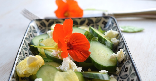 Ananas-Gurken-Salat mit Kapuzinerkresse
